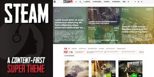 Steam WordPress theme review