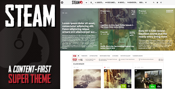 Steam WordPress theme review